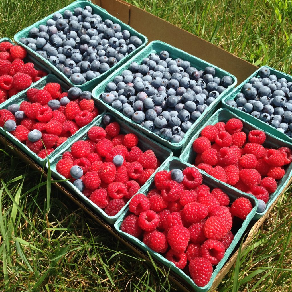 fantasy friday berries fourth of july